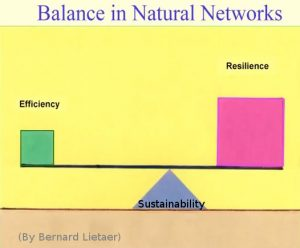 prof-lietaer-tedx-berlin-30-11-2009_9-balance-in-natural-networks-slide-sustainability-two-factors-efficiency-resiliance