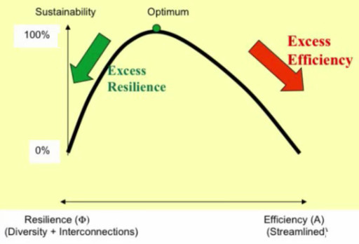excess-resilience-excess-efficiency