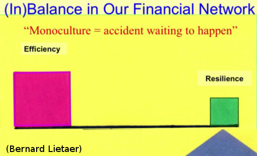 inbalance-in-our-financial-network-monoculture-is-accident-waiting-to-happen